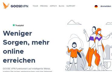 GooseVPN Pros und Contras